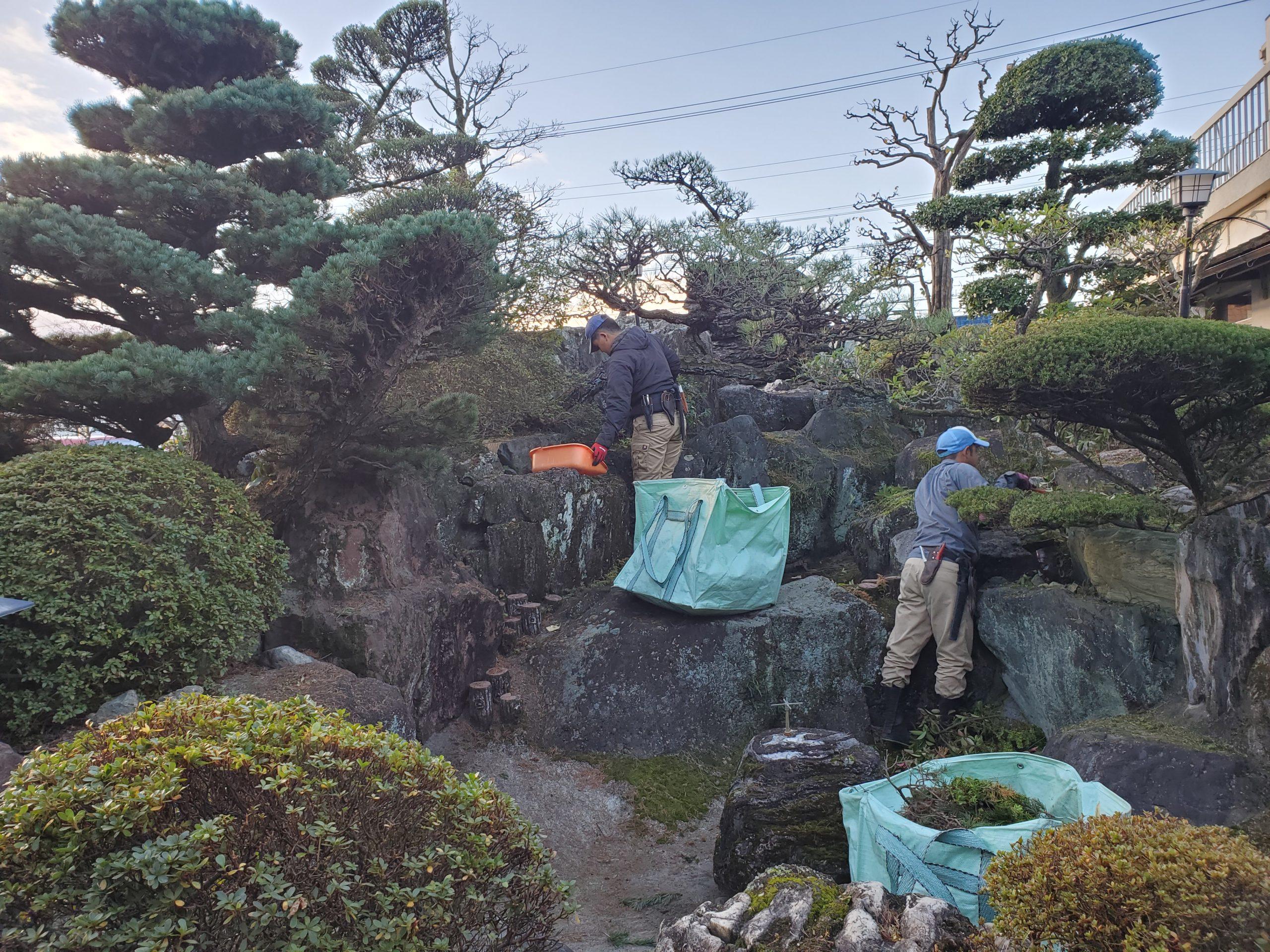 庭 剪定 庭園管理